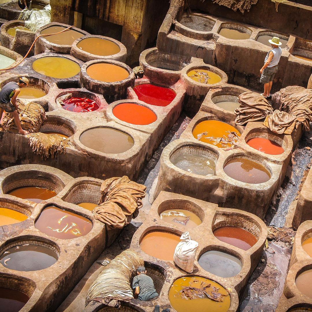 Tannerie traitement du cuir